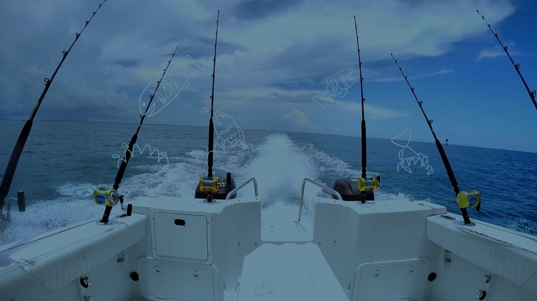 Rbff 59327 Industry Recovery Gifs Fish V01 00 00 04 06 Still001